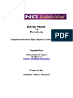 Ethics Paper on Pollution