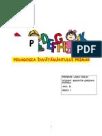 Portofoliu pedagogie