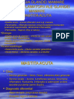 V.patologia Gl Mamare