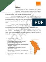 REDACTARE Analiza Preliminara Si Analiza SWOT a Orange Romania