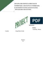 proiect-silvicultura