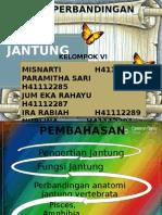 ANWAN JANTUNG.pptx