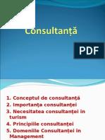 Curs Consultanta