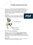 Total Hip Replacement Article by Chris Gellert, PT
