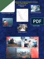 Pesca Artesanal1