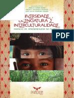 Universidade, licenciatura e interculturalidade