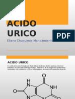 acidouricoexposicion-130418195541-phpapp01.pptx