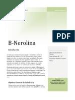 Informe B- nerolina.pdf