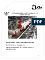 Análisis de Costos Para La Producción de Granjas Avícolas