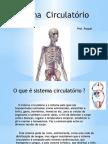 Apresentacão Sistema Circulatorio