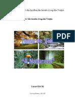 Curso EFA B3, Carvalhais, 2008-2010