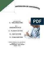 PAE  PEDRO DESNUTRICION HOY 13 (2).doc