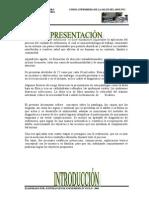 PAE apendici_agud-grupal.doc