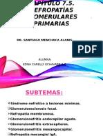 Nefropatias Glomerulares Primarias