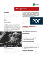 Ficha Aspergillus Spp