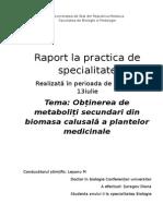 Obținerea de metaboliți secundari din biomasa calusală a plantelor medicinale