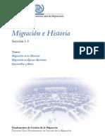 Migraciones e historia