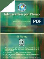 Intoxicacin Por Plomo4195
