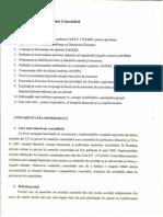 Consolidarea conturilor.doc