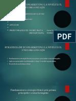 Strategia de Ecomarketing La Nivelulul Unei Organiza II