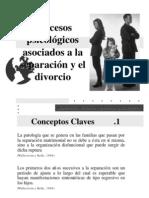Procesos Psicológicos Asociados a La Separación y