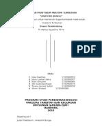 Laporan Praktikum Anatomi Tumbuhan