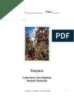 Lab Enzymes