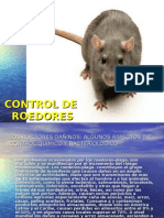 Control de Roedores 2015-1