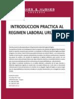 Regimen Laboral Uruguayo