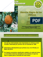 4. MANCHA NEGRA Hilda Gómez.pdf