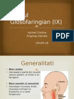 nervul glosofaringian