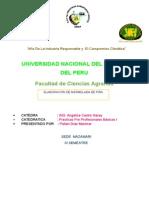Informe de La Piña 3