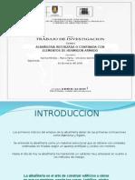 (20090702)Albañileria Reforzada o Confinada (1)