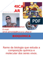 Aula de Bioquímica Celular - Erick Ramon