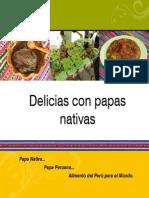 Anexo 2 RECETARIO GASTRONOMICO.pdf