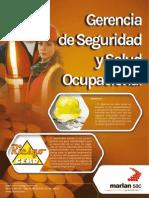Catalogo Seguridad Salud Ocupacional