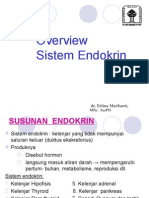 82568989 Endokrin 101101a Dr Erlina Overview Endokrin 2011