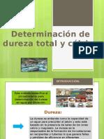 Presentación DUREZA