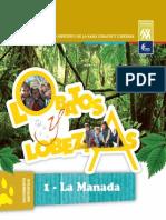 Documentos de Programa - MANADA 1