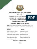 Proyecto COMUNICACIÓN TÉCNICA original.docx