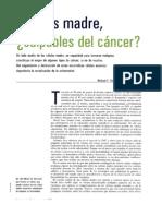 Celulas Madres y Cancer
