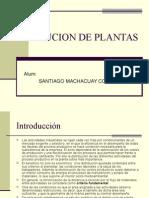 Diseno de Plantas