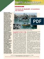 fas_310_es (1).pdf