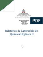 Modelos de Relatórios Para Aulas Experimentais de Química Orgânica