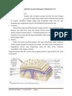 PBL SK 1 Neuro-Kejang-Demam.docx