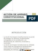 Acciòn de Amparo Constitucional