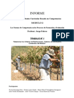 Avance III Informe Criterios de Desempeño