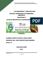 PROYECTOS II.docx