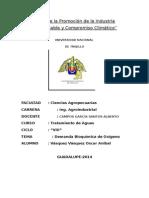 Informe de Dbo (1)