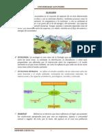 Trabajo n 01 Gestion Ambiental